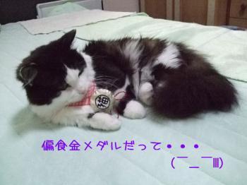 2008_05090034.jpg