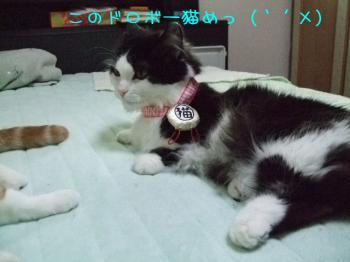 2008_05090044.jpg