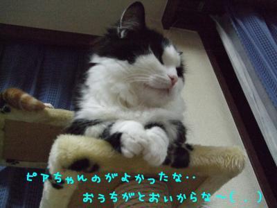 2008_05210030.jpg