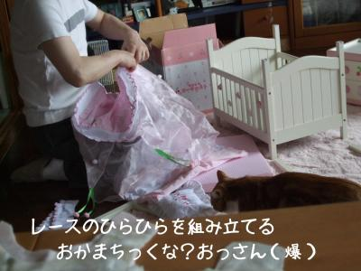 2008_05240010.jpg