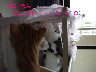 2008_05240058.jpg