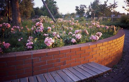 public flower garden