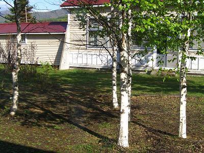 旧校舎の中庭