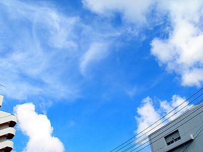 20080617b.jpg