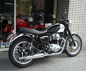 wink_20080810220536.jpg