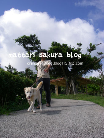 sanpo_20080420013152.jpg