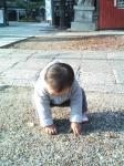 阿部野神社境内での第一子