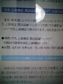20080621012021.jpg
