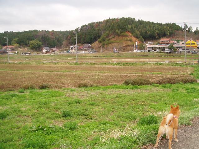 20080420 030