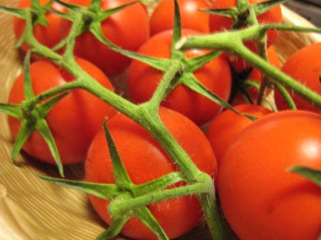 トマト(カンパリ)