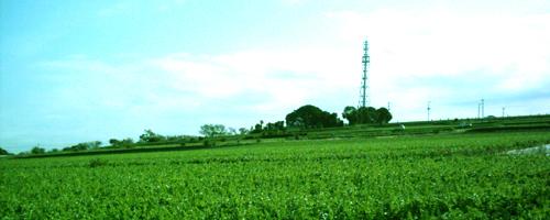 あこがれの三浦の景色