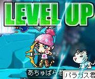 up4.jpg