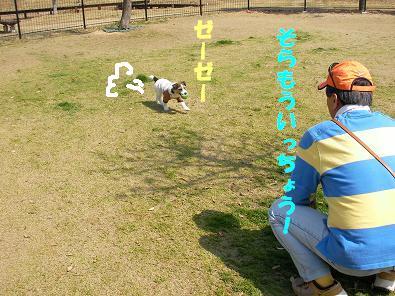 三木SA4