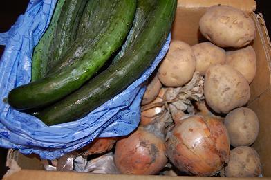船坂の野菜たち