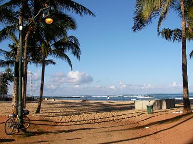 朝のビーチ?