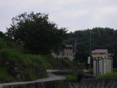 画像 061