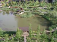 中庭 南湖