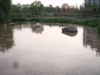 増水した西湖