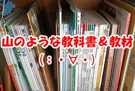 2008-04-09-2.jpg