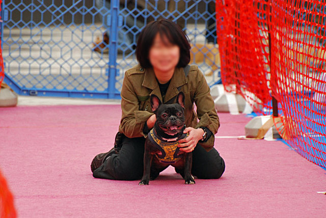 tokyo (44)