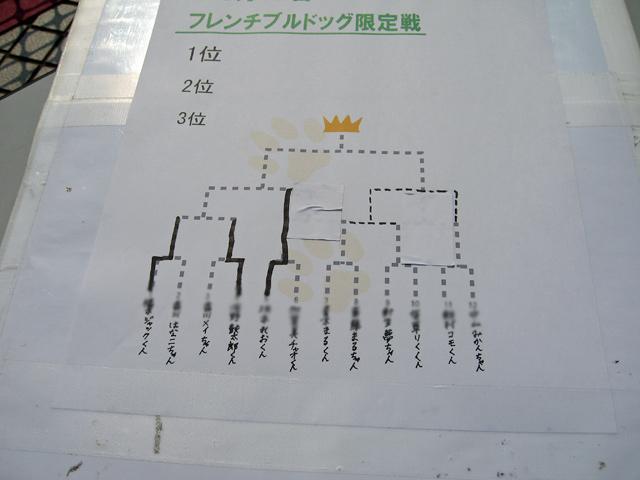 2008 05 17  (12)