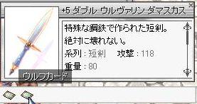 498.jpg