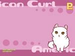 白い猫ちゃん