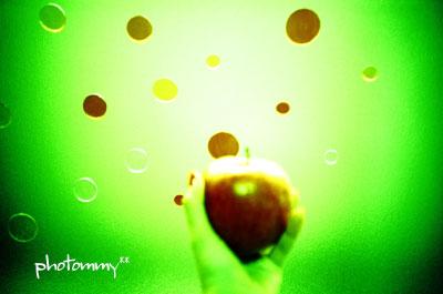 りんご042903