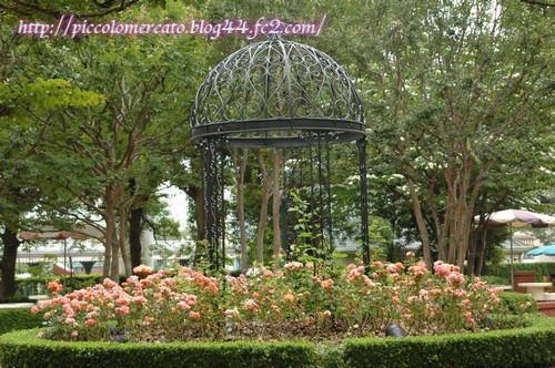 pikunikaeraflower-1.jpg
