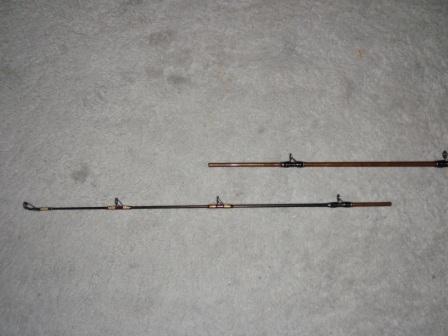 P7200021.jpg