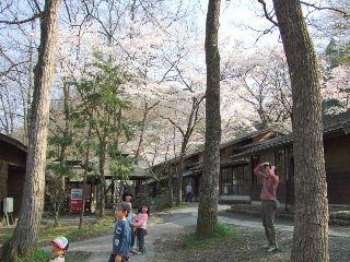 秋保木の家