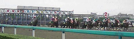 2008.05.05かしわ記念スター.jpg