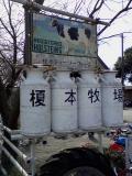 榎本牧場1