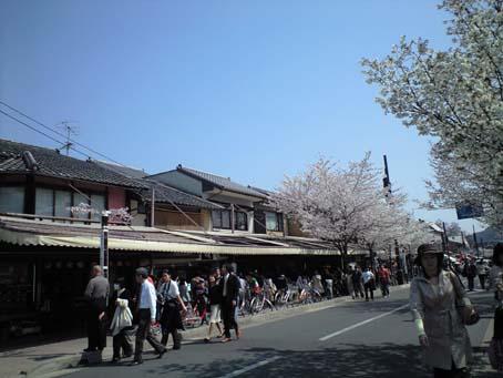 京都 6 嵐山 B