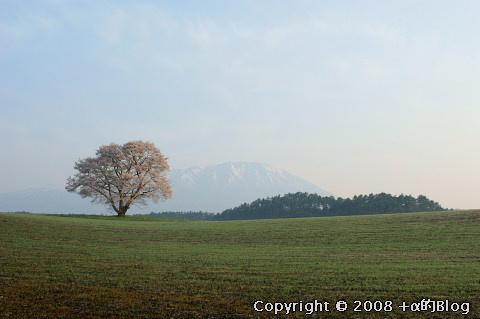 iwate0804f_eip.jpg
