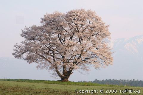 iwate0804h_eip.jpg
