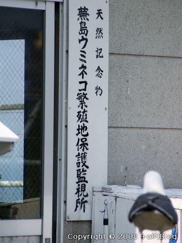 umineko080523p_eip.jpg