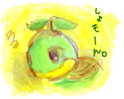 snap_pokekaeru_200843213253.jpg
