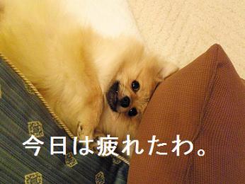 眠いとタレ目になります。