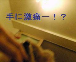 何ごとー!?
