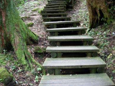 木で出来た階段