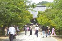 仁和寺の中門から金堂へ