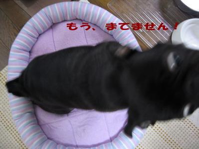 021_20080804220228.jpg