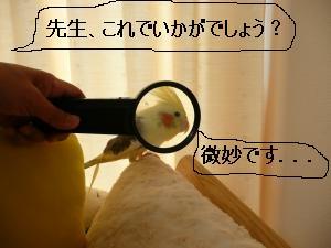 撮影会5.