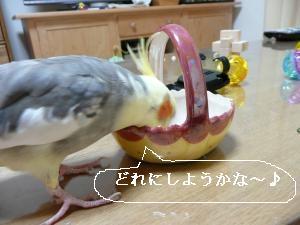 5/27ビ-ズ遊び1