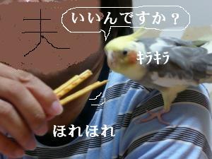 ポッキ-おくれ2