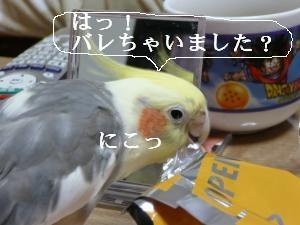 ポッキ-おくれ5