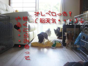okyakusama3.jpg