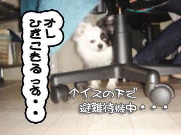 okyakusama5.jpg