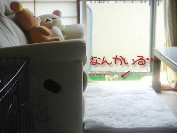 sonzai1.jpg